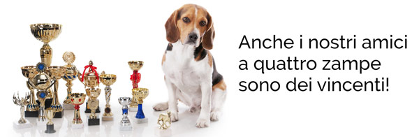 coppe-competizioni-cani-gatti